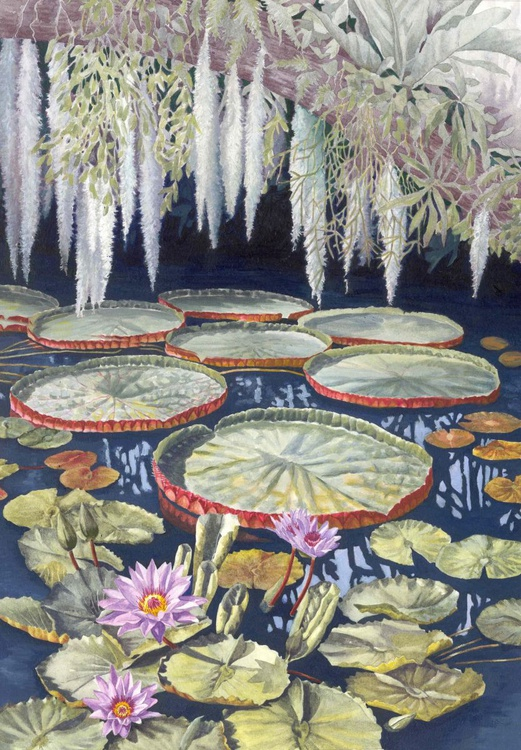 Jungle Water Lilies - Image 0