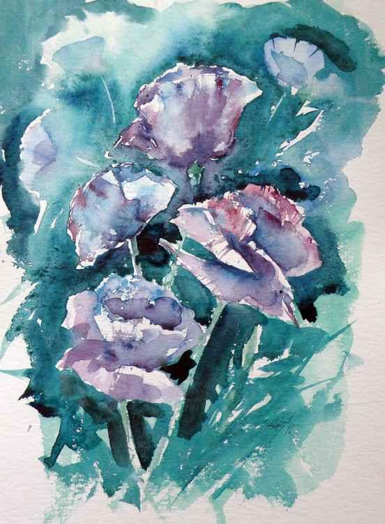 Beautiful poppies -