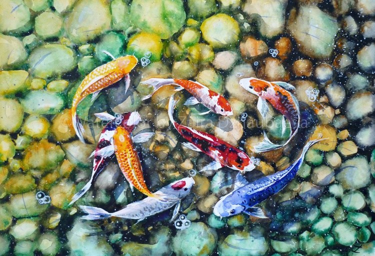 Eight Koi Fish Playing with Bubbles - Image 0