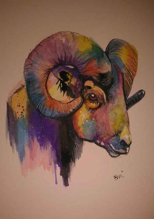 Ram colour tone