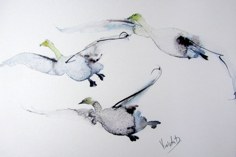 A Flock of Swans in Flight - Image 0