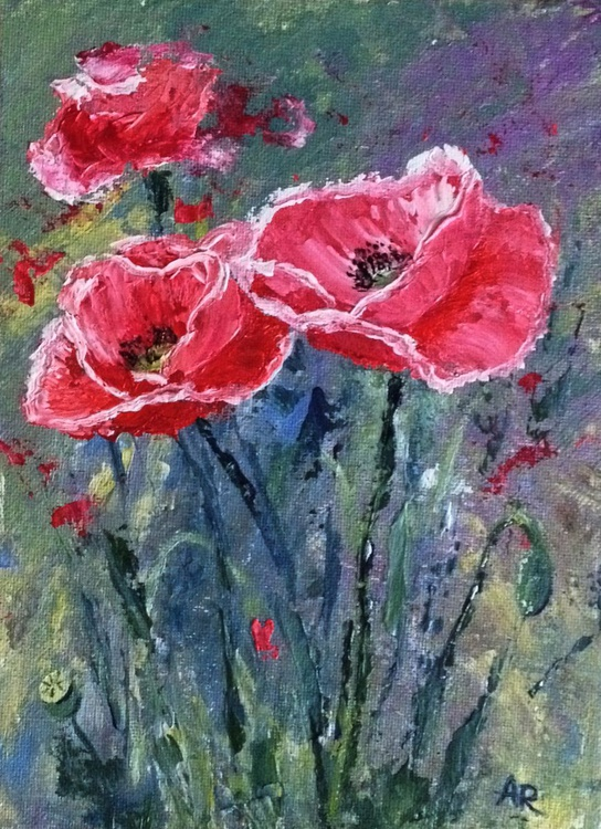Pink poppies - Image 0