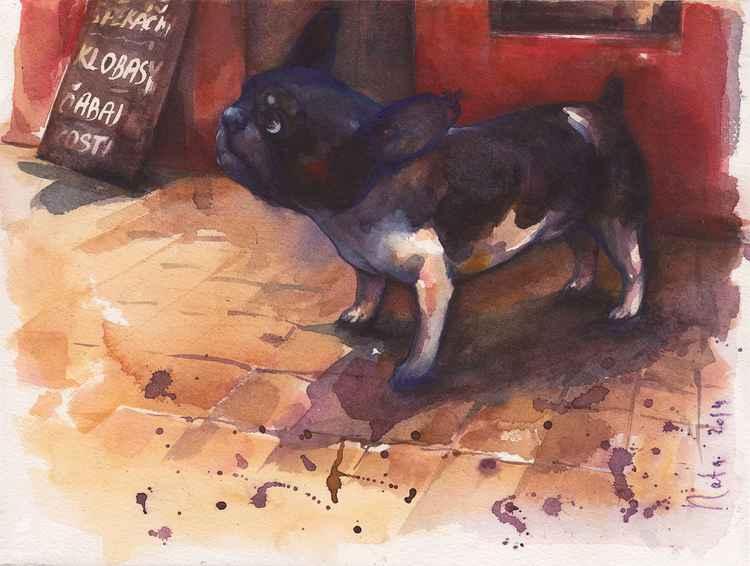 French bulldog ( Series butcher's shop) -