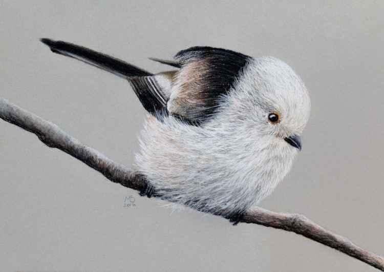 """Original pastel drawing """"Long-tailed tit"""" -"""
