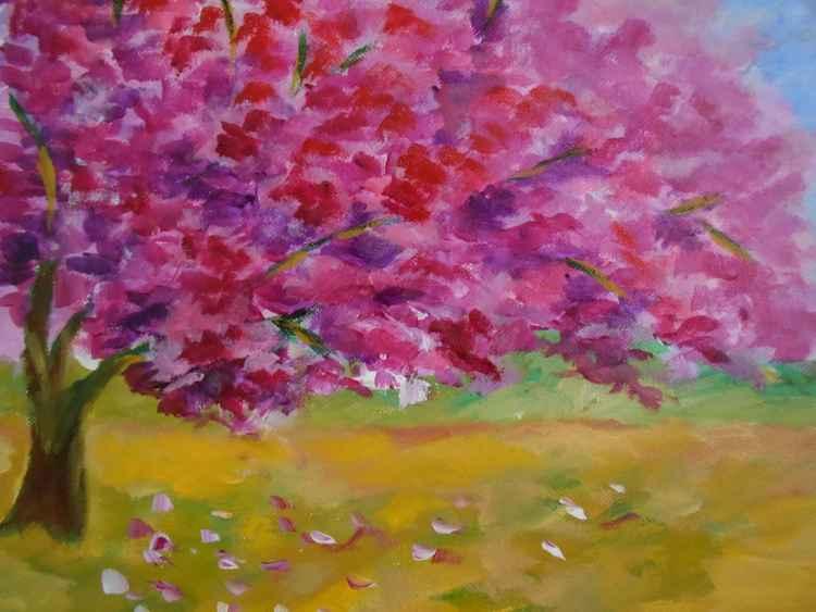 Cherry Blossm - 2 -