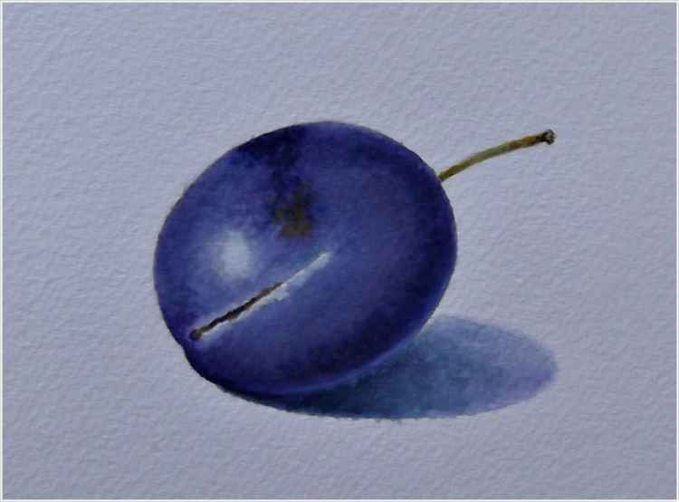 lonely plum