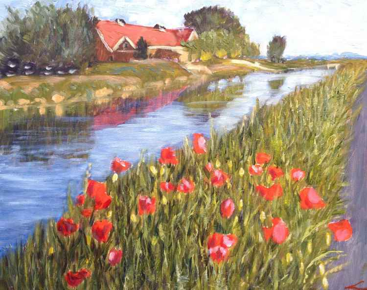 Landscape with poppies -
