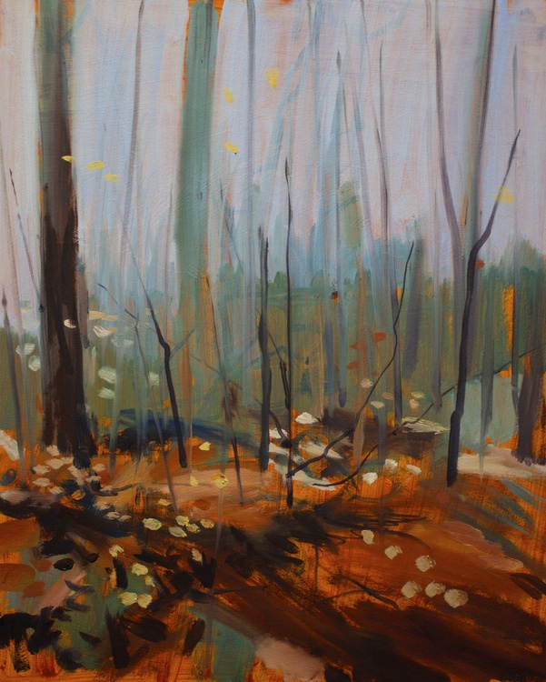 Lancashire Woodland Autumn Study - Image 0