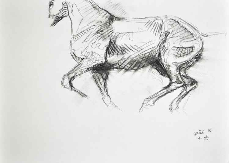 Sketch 289 -
