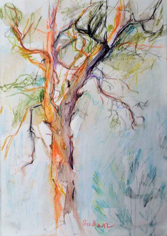 Colorfull tree -