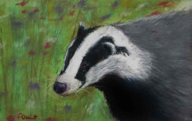 Fat Badger, pastel postcard art