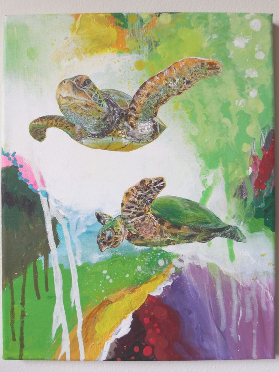 Sea Turtle Collection: 6 - Image 0