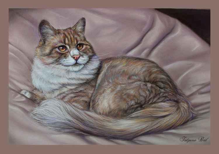 Pastel cat portrait -