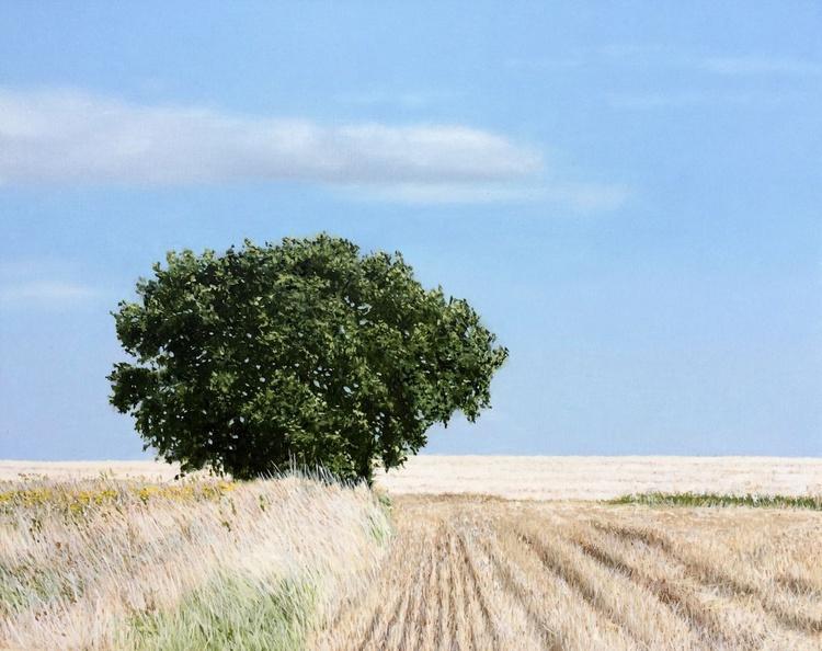 August Landscape - Image 0