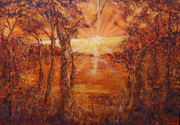 Forest Sunset - Image 0
