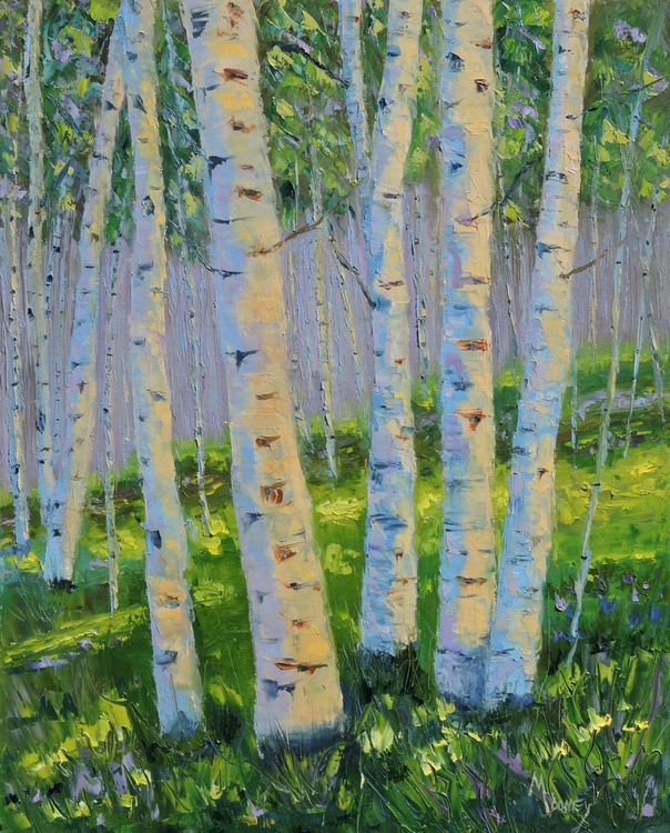 Aspen grove in summer - Image 0