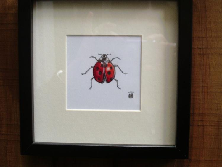 Ladybird Study. - Image 0
