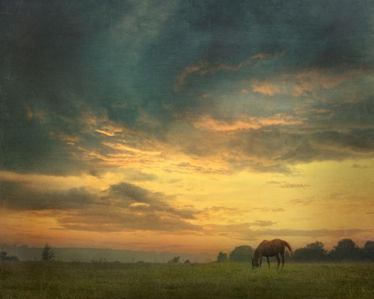 Warm sunset. - Image 0