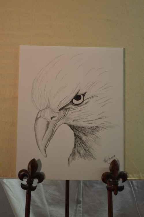BOLD EAGLE -