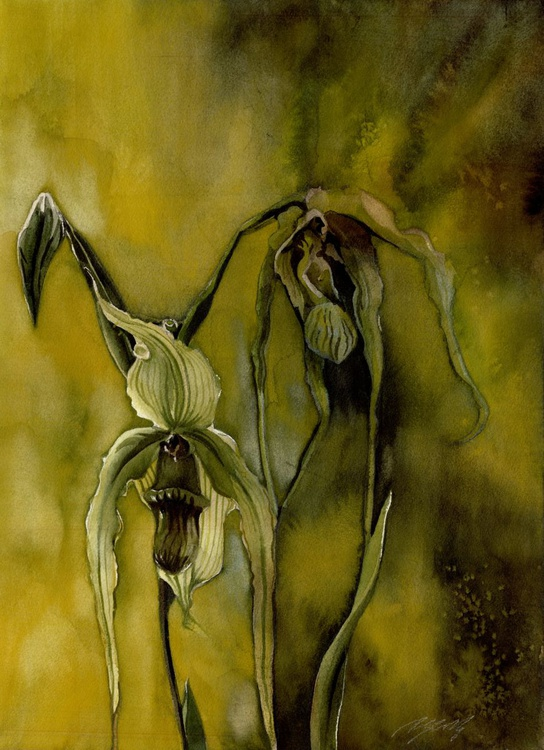 ladyslipper orchid with yellow - Image 0