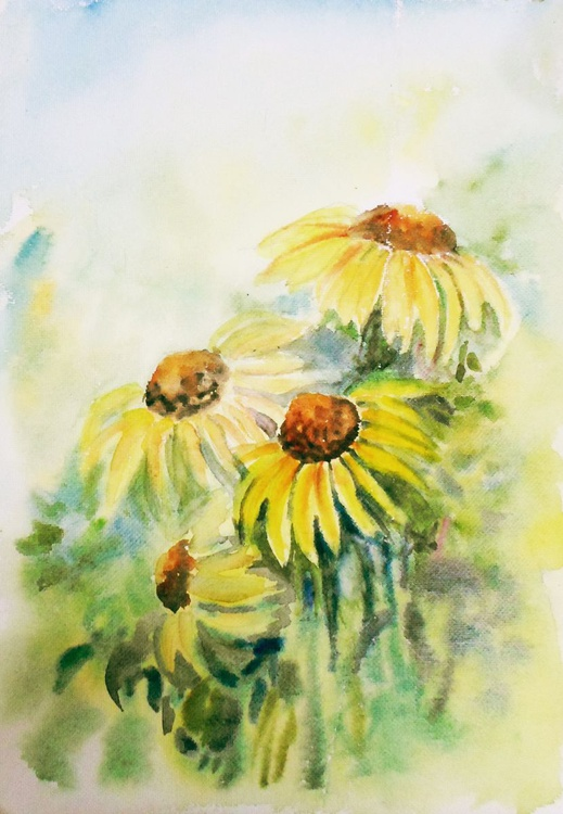 """Four Cone Flowers 11.5""""x 8.5"""" - Image 0"""