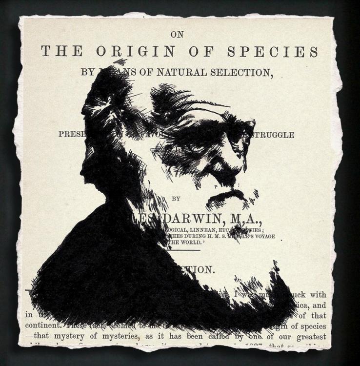 Darwin - On the Origin of Species (Framed) - Image 0