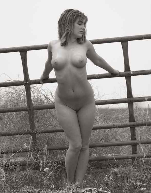 Gate -