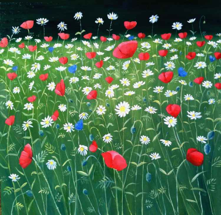 Poppies and daisies in St James Park -