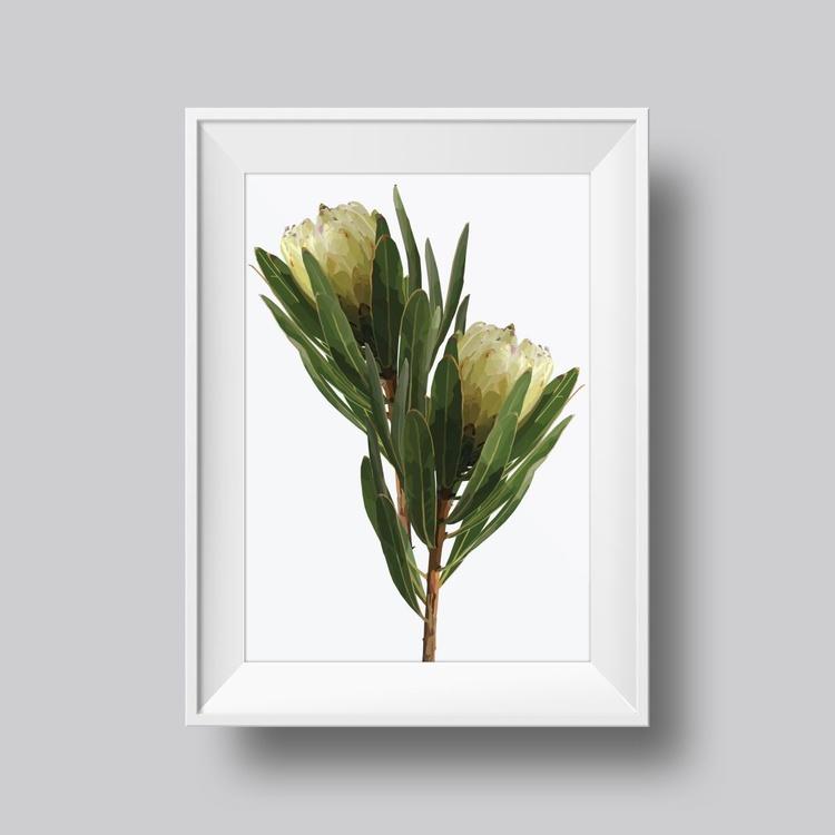 White Protea - Image 0
