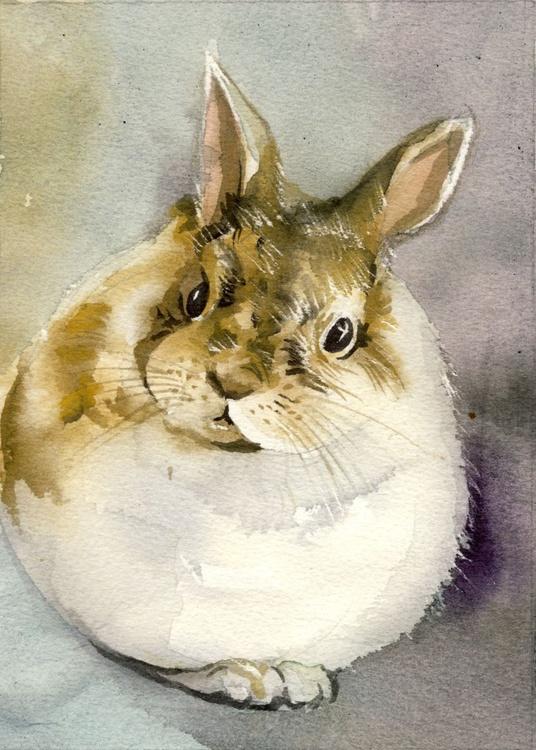 little bunny - Image 0