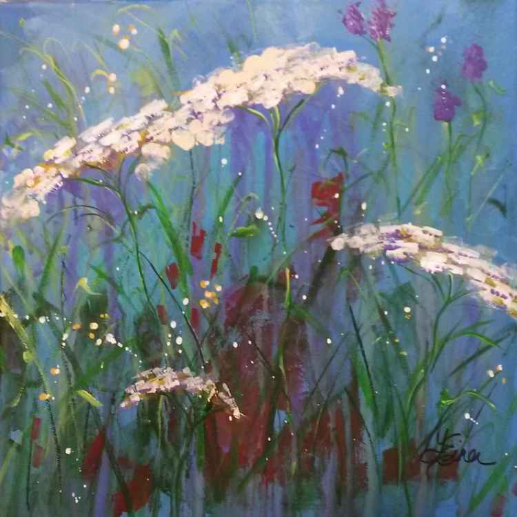 Queen Ann's Lace -