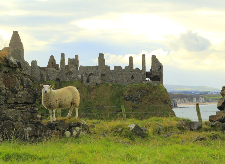 Dunluce Castle Ireland of the Welcomes - Image 0