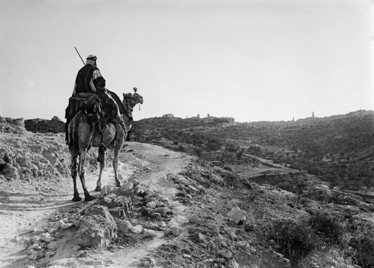Evening on the road to Bethlehem. Camel-rider approaching Bethlehem in the twilight - Image 0