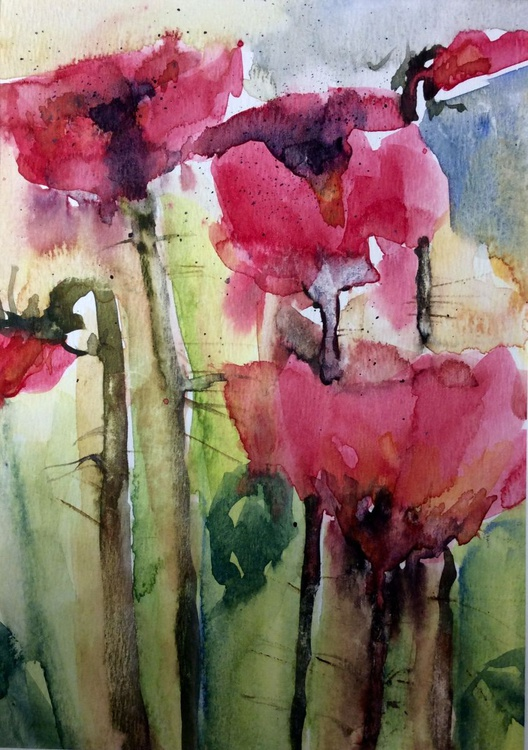 Pink Delight Poppies - Image 0