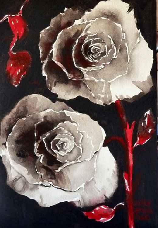 Rosa de Buio III -