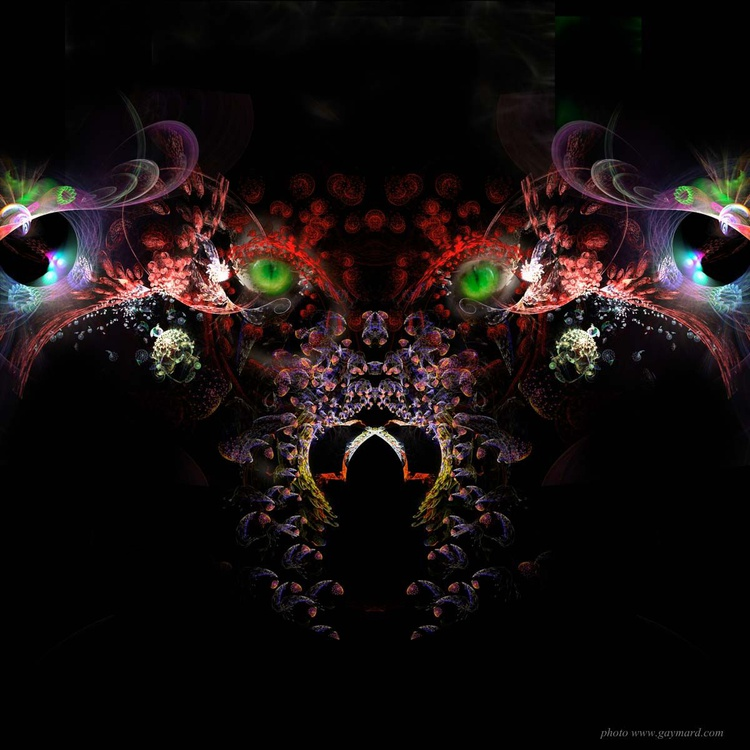 The wolf - Image 0