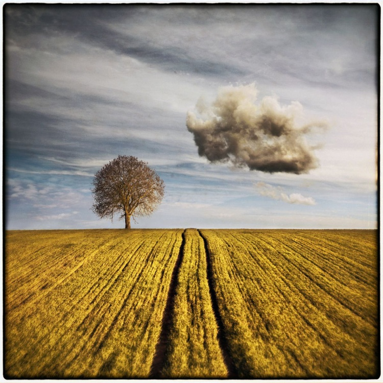 Dark Cloud - Image 0