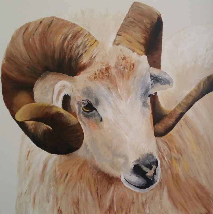 """I'm Watching Ewe"" Horned Ram"