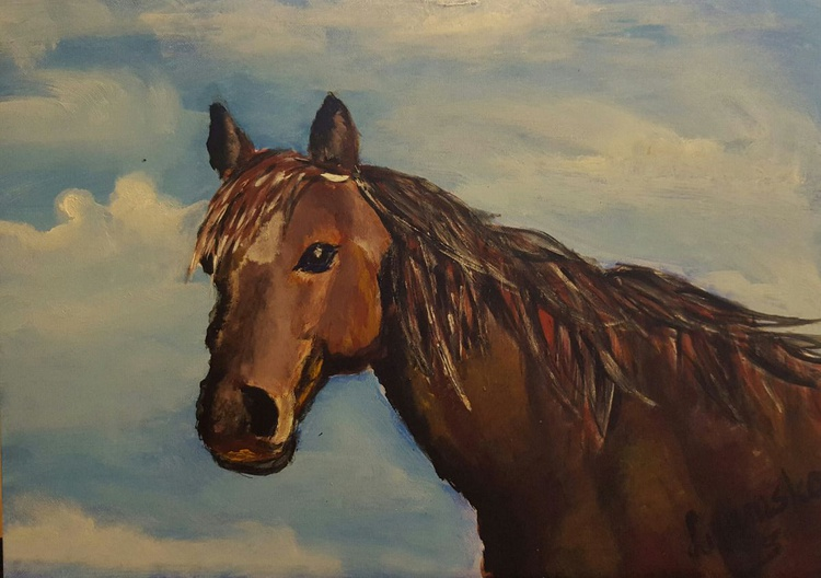 A horse - Image 0