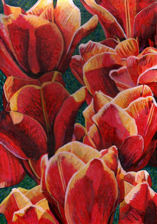 Red Tulips - Image 0