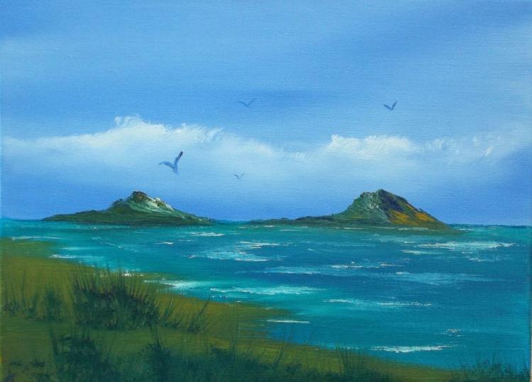 Islands near the shore - Image 0
