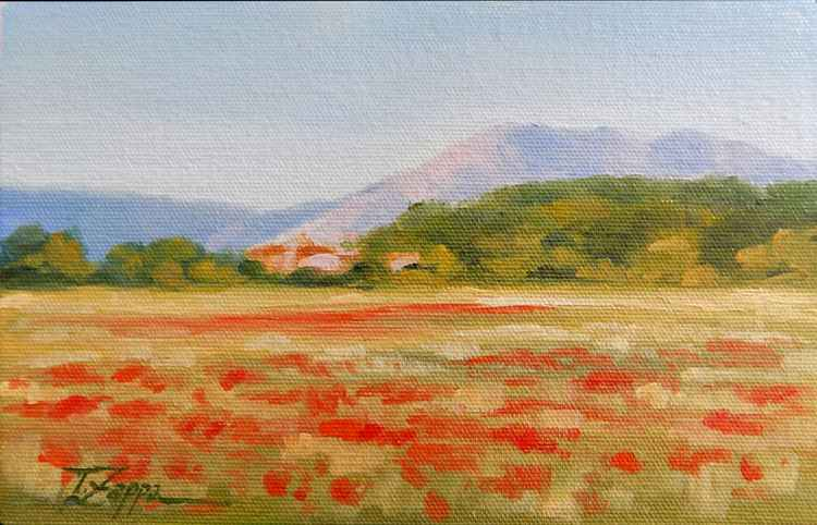 Field with poppies -
