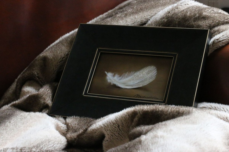 Feather - Image 0