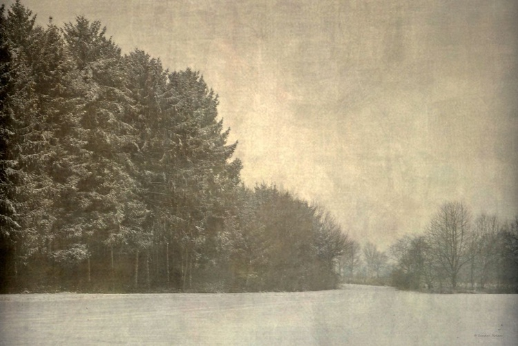 A Touch of Winter - Image 0