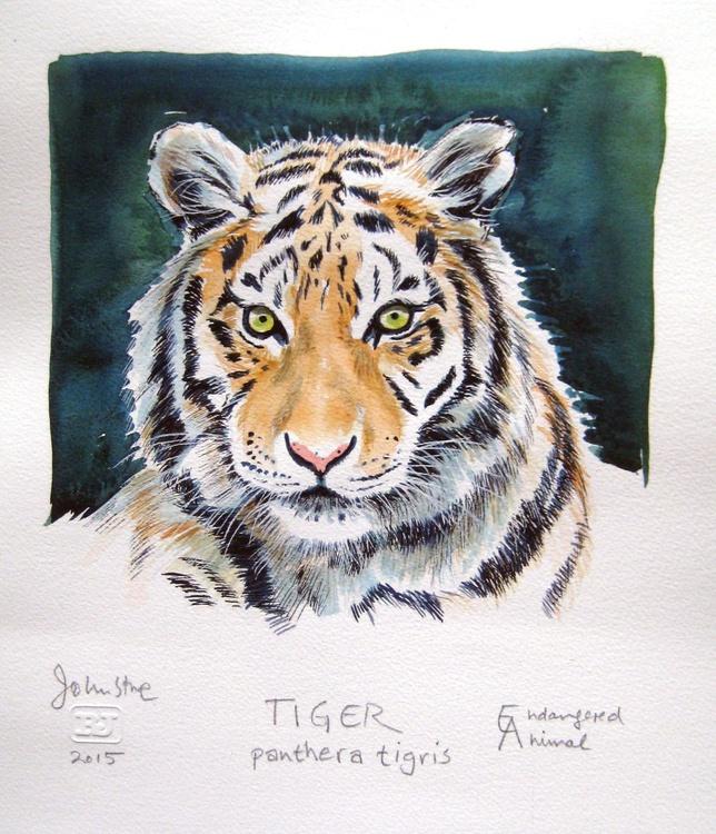 TIGER - ENDANGERED ANIMAL SERIES - Image 0
