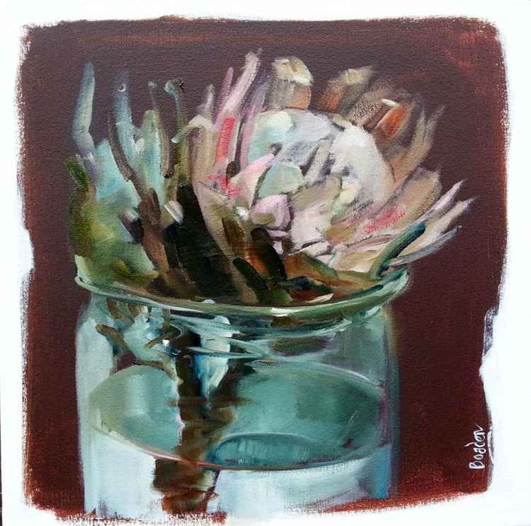 Protea in Glass Jar 2