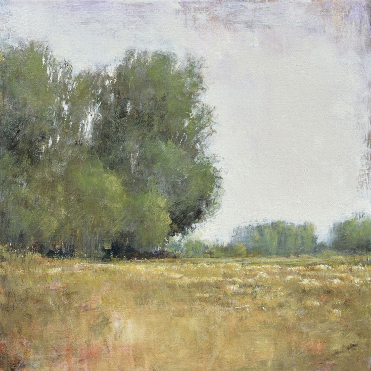 Afternoon Field 24x24 inches - Image 0