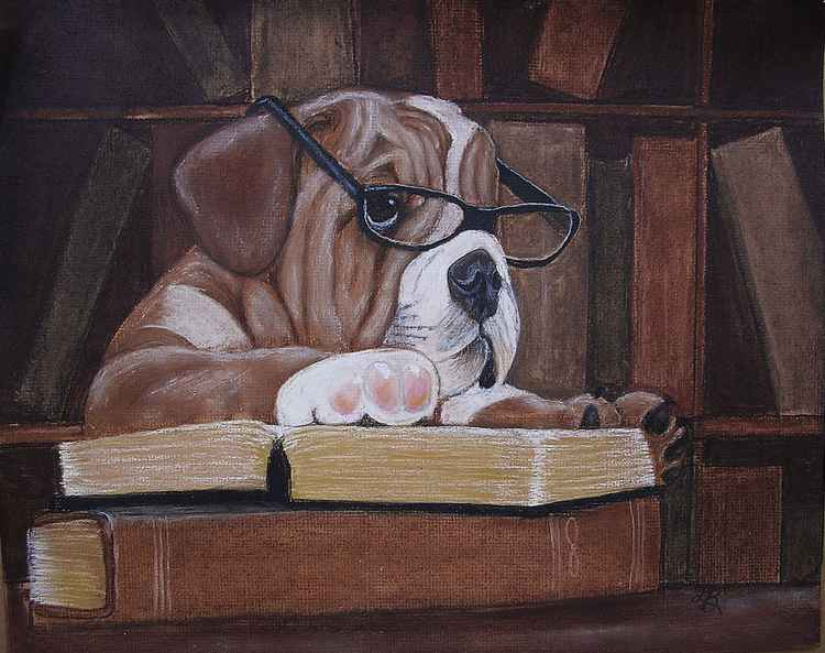 Bookish Bulldog