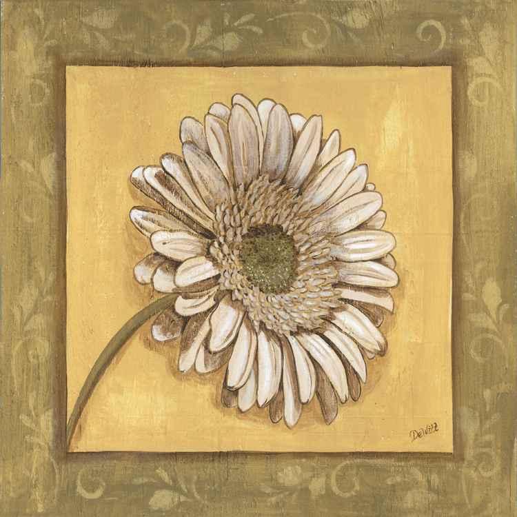 Bohemian Daisy -