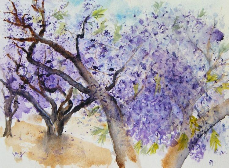 Blooming Jacarandas - Image 0